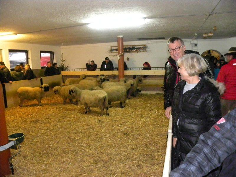 Zuchtwart des Tiroler Schafzuchtverbandes Jaufenthaler Johann mit seiner Gattin
