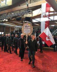 Walliser Schwarznasen auf der 80Jahre Tiroler Schafzuchtverband -  Schafausstellung