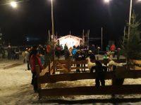 Walliser Schwarznasenschafe beim Advent am Pillersee